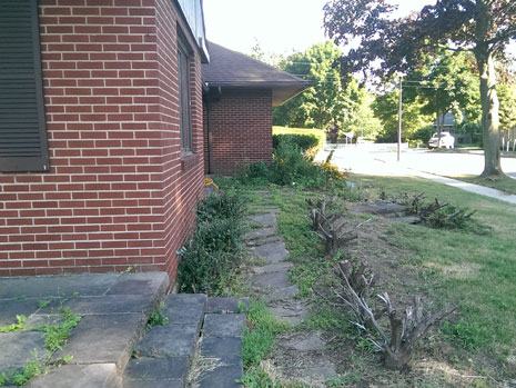 Professional Lawn Care & Landscaping in Lockport