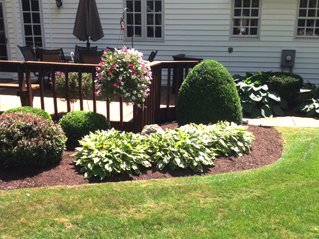 landscaper in Lockport