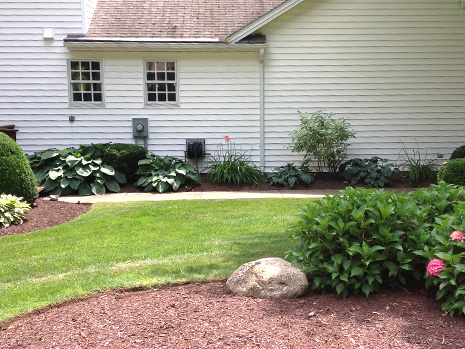Full service lawncare Lockport